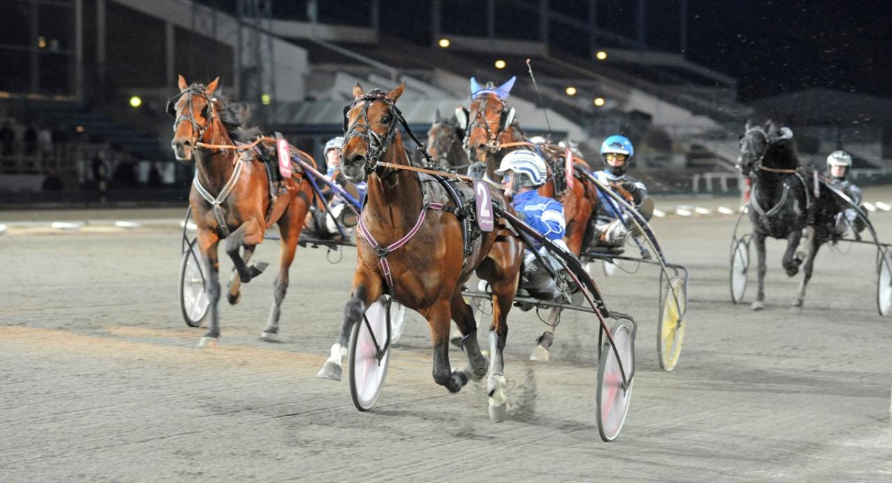 Uppfödningslöpningsvinnaren Coin Perdu anmäldes till premiechansningen i mars som tvååring. Från och med 2015-kullen är nu alla hästar med från början i premiechansen.