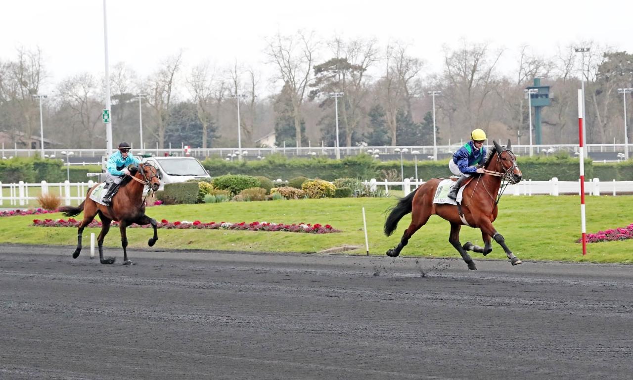 Arlington Dream vid en tidigare seger på Vincennes. Foto Mia Törnberg