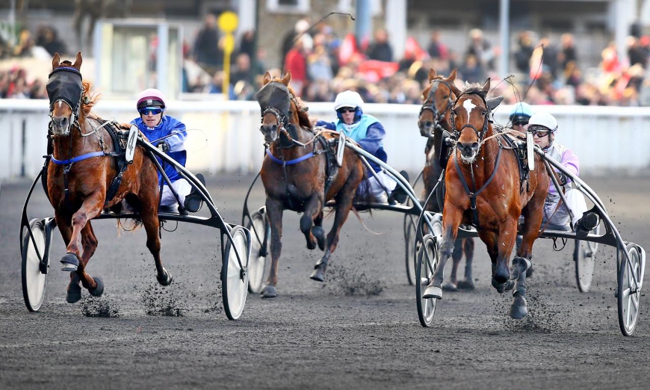 I mitten av december vann Carat Williams duellen med Charly du Noyer med drygt en längd i grupp II-loppet Prix Octave Douesnel. Foto Scoopdyga.com