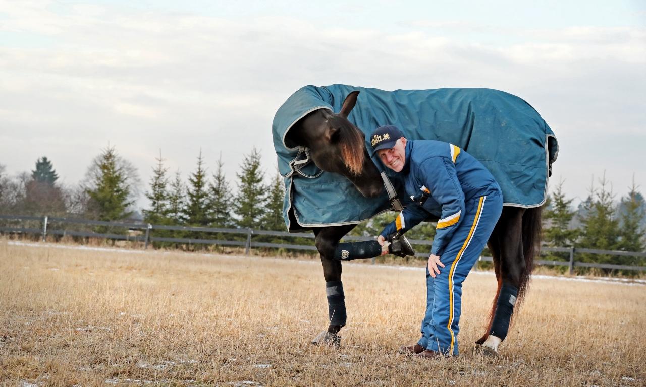 Nuncio svarade för en finfin comeback efter att ha varit borta från tävlingsbanan sedan i juni. Foto Mia Törnberg