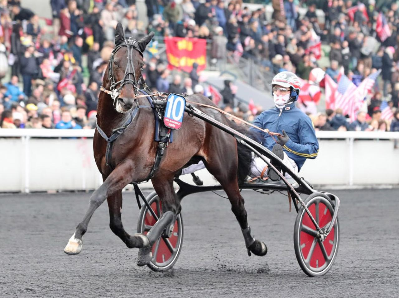 Bird Parker avser inte starta i norska storloppet Oslo Grand Prix. Foto Mia Törnberg