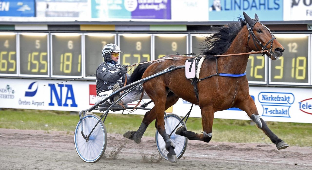 Får Athos Race och Åke Lindblom segerdefilera på Solvalla? Foto Martin Langels/ALN