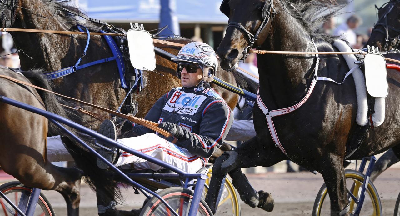 Ulf Ohlsson räknade in sex segrar i sitt kuskande i Rättvik och Bollnäs. Foto Mia Törnberg/Sulkysport