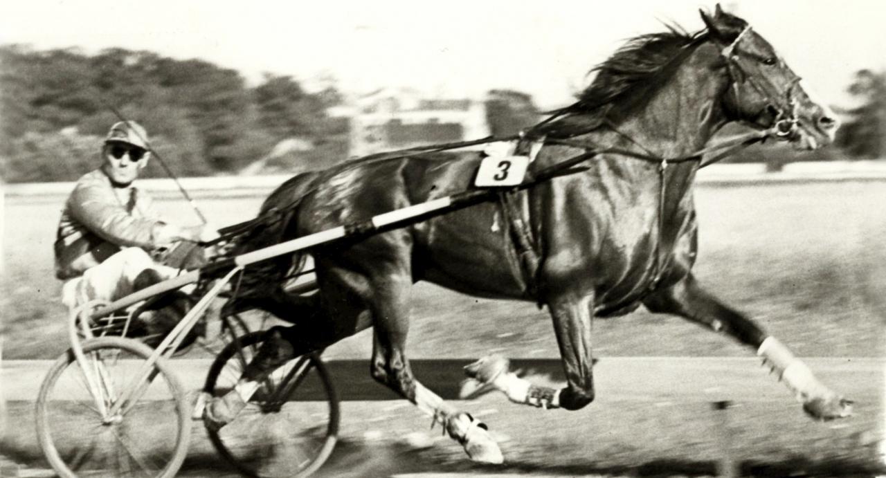 Big Noon var förste svenskfödde under 1.20. Foto: Erik Andersson   Big Noon