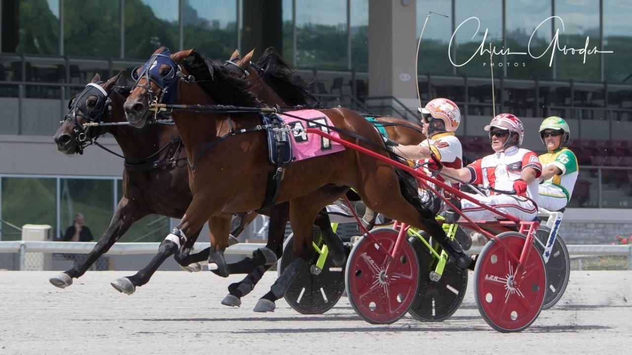Invändige Perseverance håller undan till seger för Dave Palone. Foto Chris Gooden