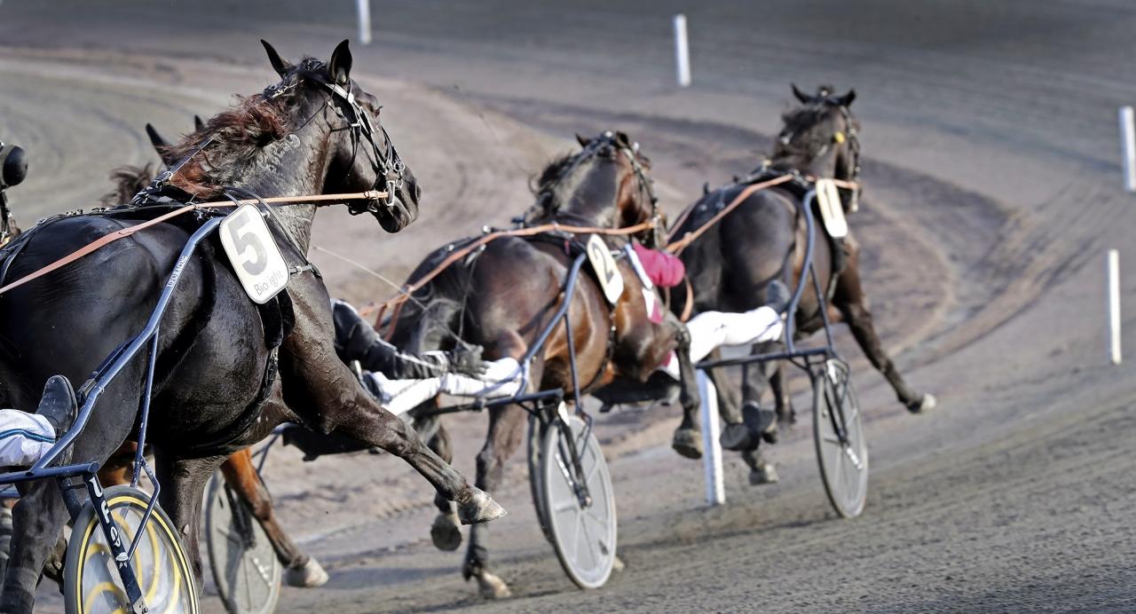Anders Ström tycker till om tävlingsprogrammet - och vad som gått fel i tänket runt det beslutade upplägget. Foto Mia Törnberg