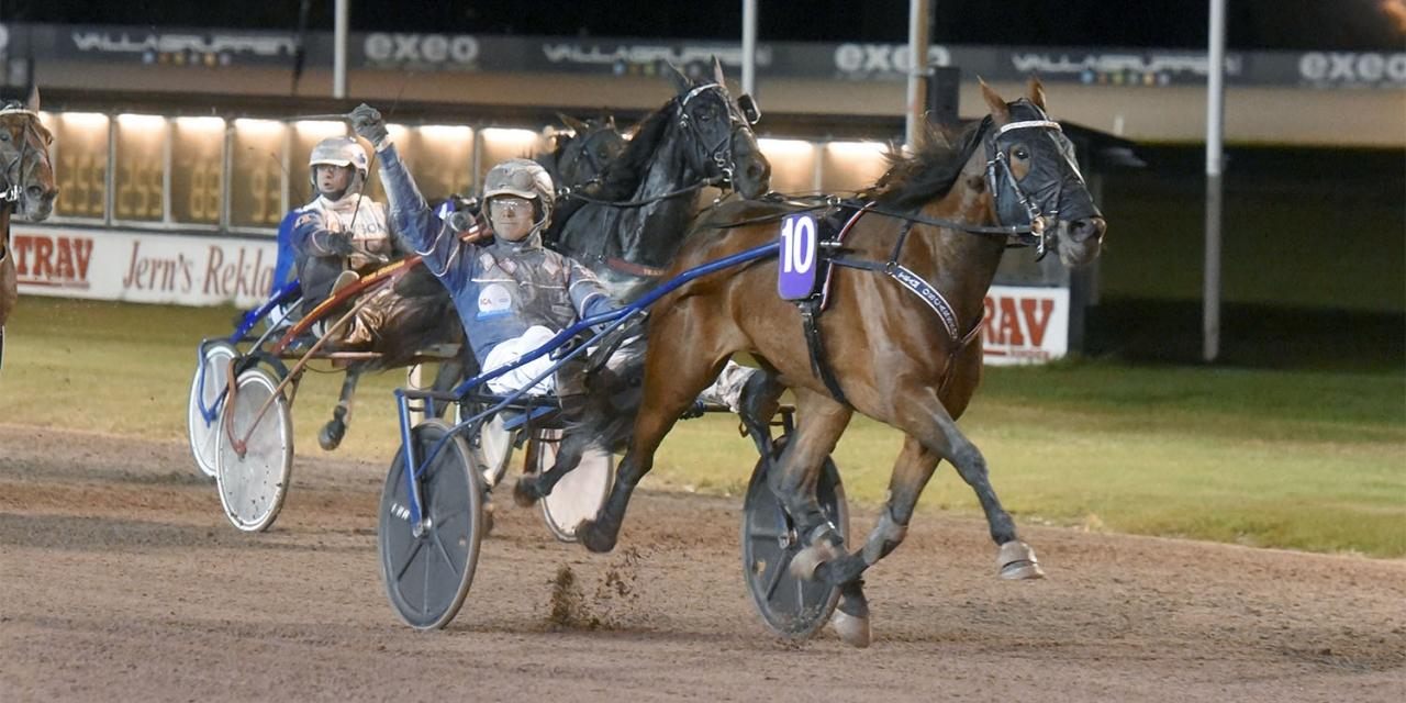Kevin Oscarsson styrde Violet Bi till seger i Sikta mot stjärnorna. Foto Magnus Strömsten/ALN