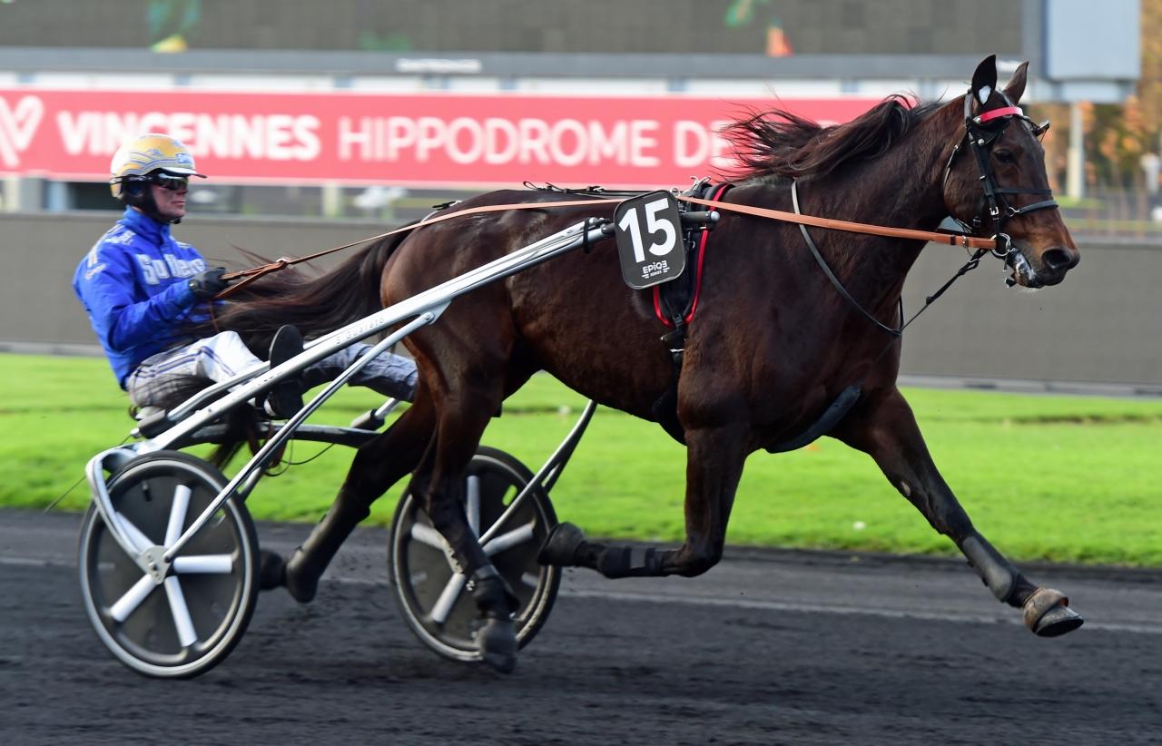 Bold Eagle var inte fräsch i värmningen och kretsen runt hästen valde att stryka honom från Prix de Bretagne. Foto: Gerard Forni