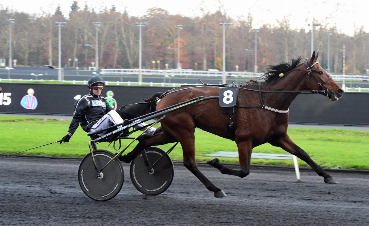 Mindyourvalue W.F. är ute på ny eurojakt och på söndag tävlar han om ett förstapris på 47.250 euro. Foto: Gerard Forni