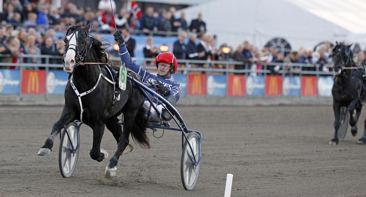 Tekno Odin har vunnit det mesta som vinns att vinna i kallblodsväg, men inte Lars Laumbs lopp. Dags på lördag? Foto: Urban Kihlman/ALN