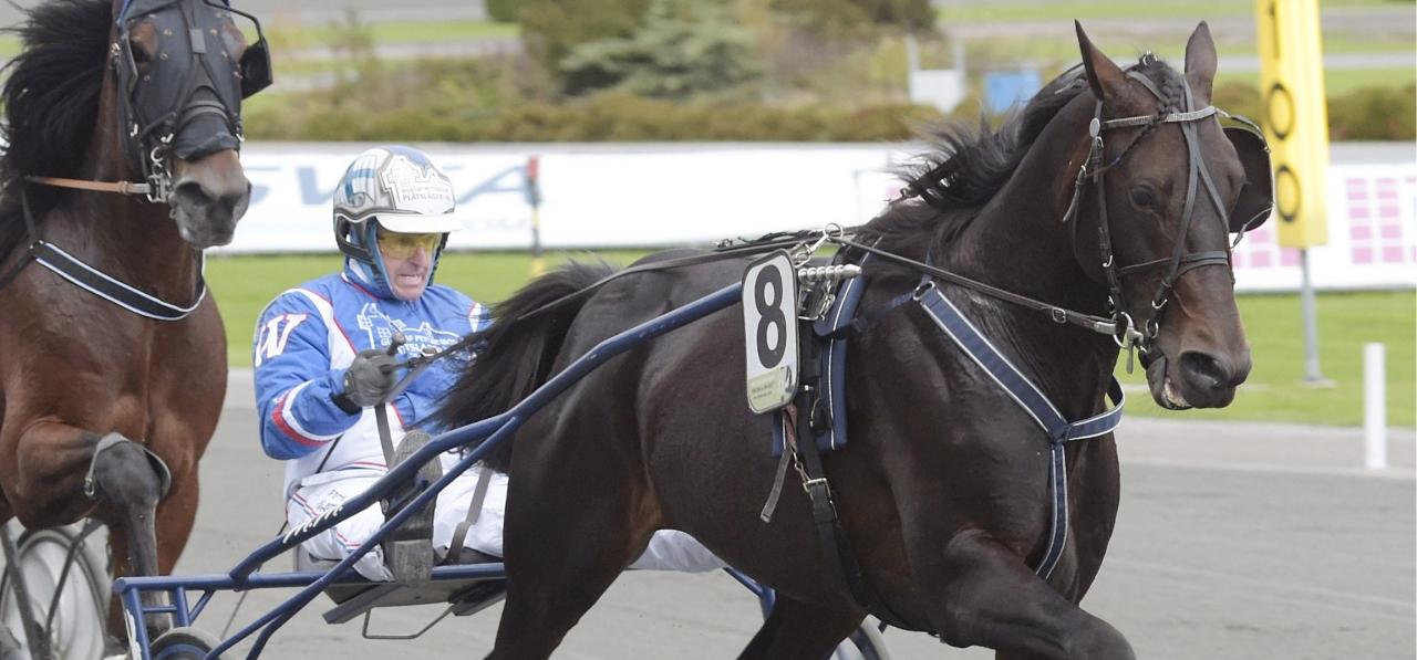 Track Angel och Kaj Widell. Foto Leif Norberg/ALN