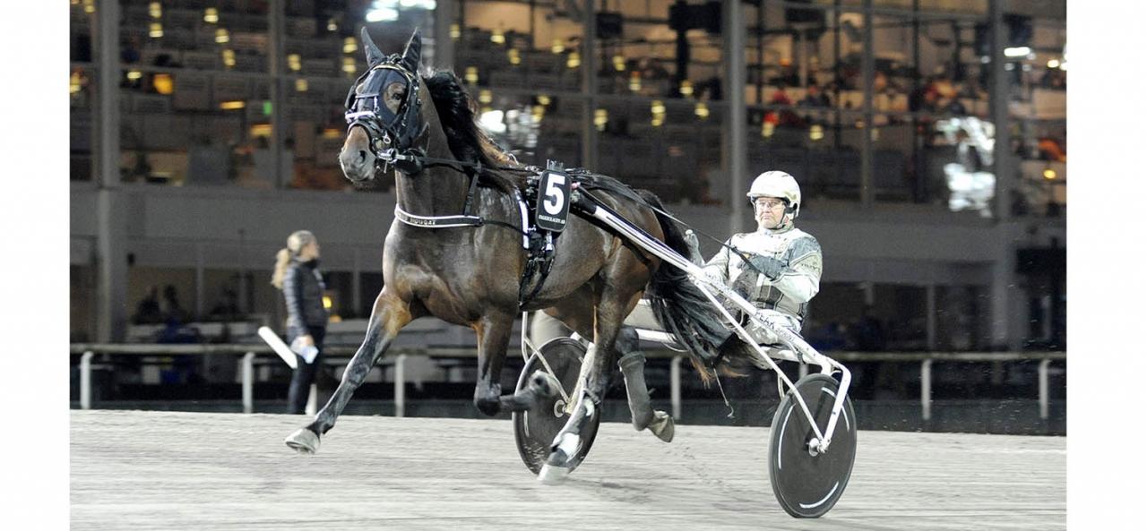 Önas Nougat och Per Nordström. Foto Jörgen Tufvesson/ALN