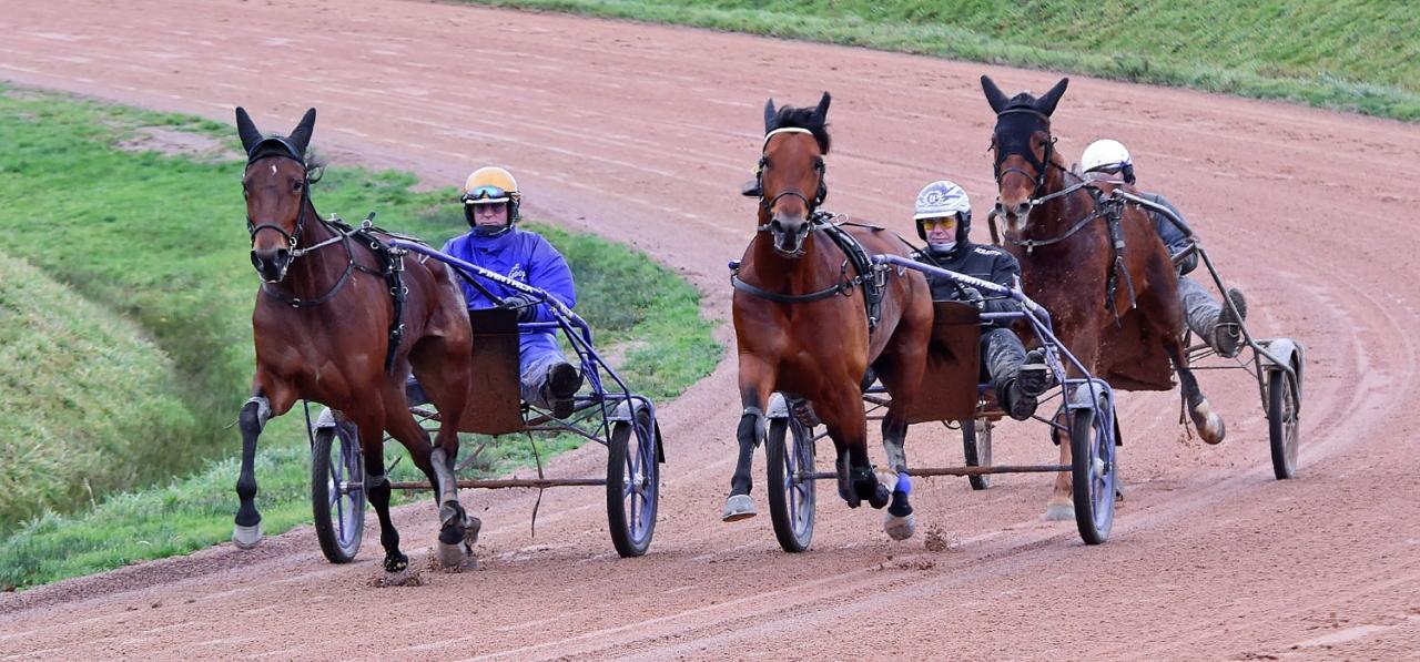 Readly Express tränade  på Björn Goops franska gård i fredags. Nurmos var själv på plats. Foto Gerard Forni
