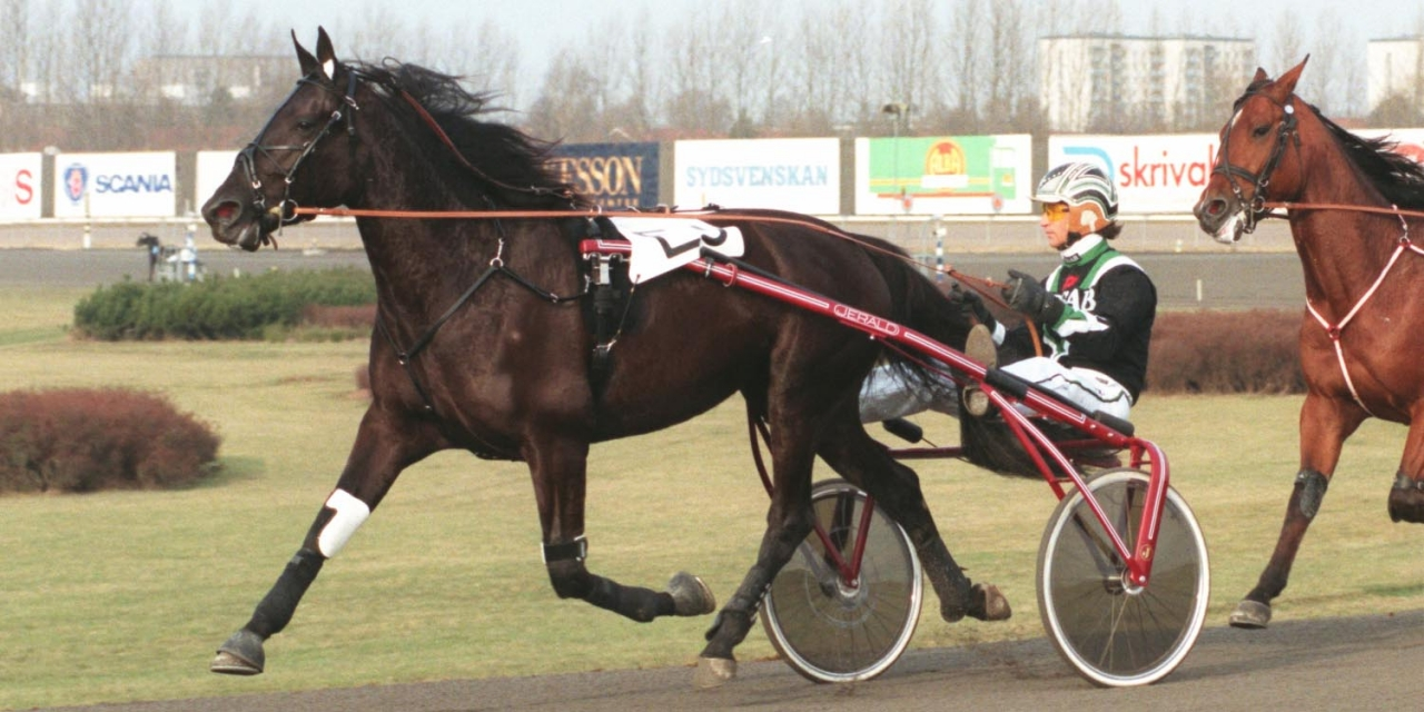 Dame Lavec med Viking Kronos i rygg. Foto Petri Johansson/Kanal75