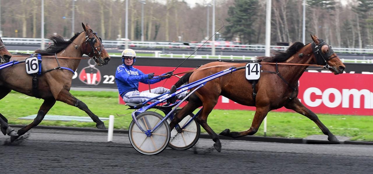 Danne Edel fanns tidigare i träning hos Reijo Liljendahl, men numera finns han hos Björn Goop. Idag tog han sin första seger i Frankrike. Foto: Gerard Forni.