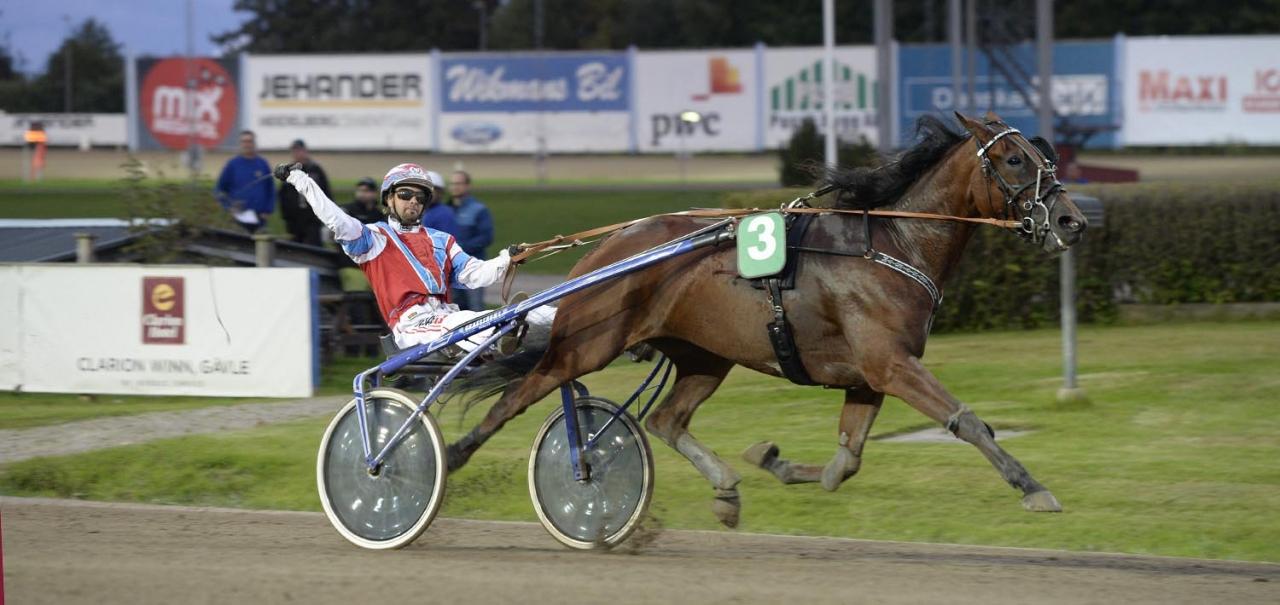 Marcus Sundberg bjuder på segergest bakom egna hästen Maintainability. Foto Christer Norin/ALN