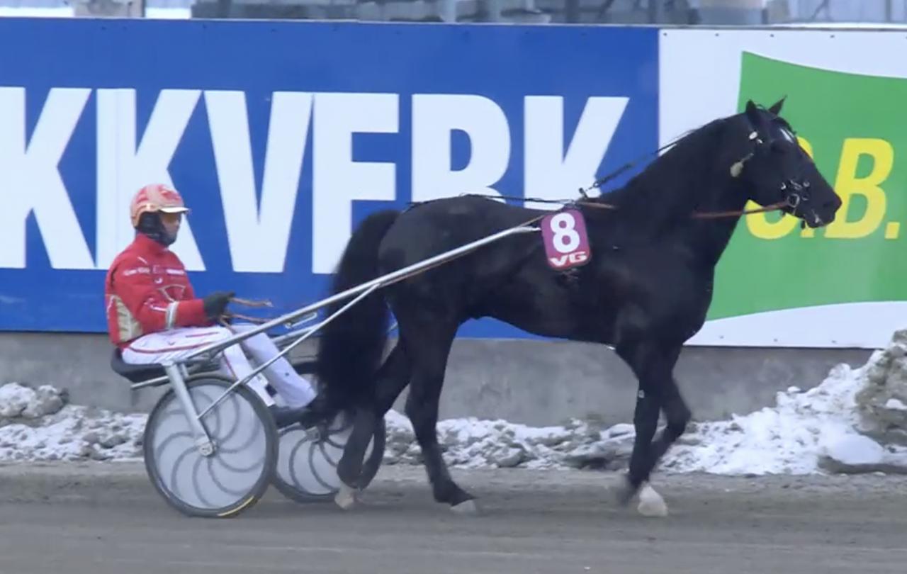Frode Hamre-tränade Ingbest vann Lars Laumbs lopp på Bjerke. Foto: Rikstoto Direkte