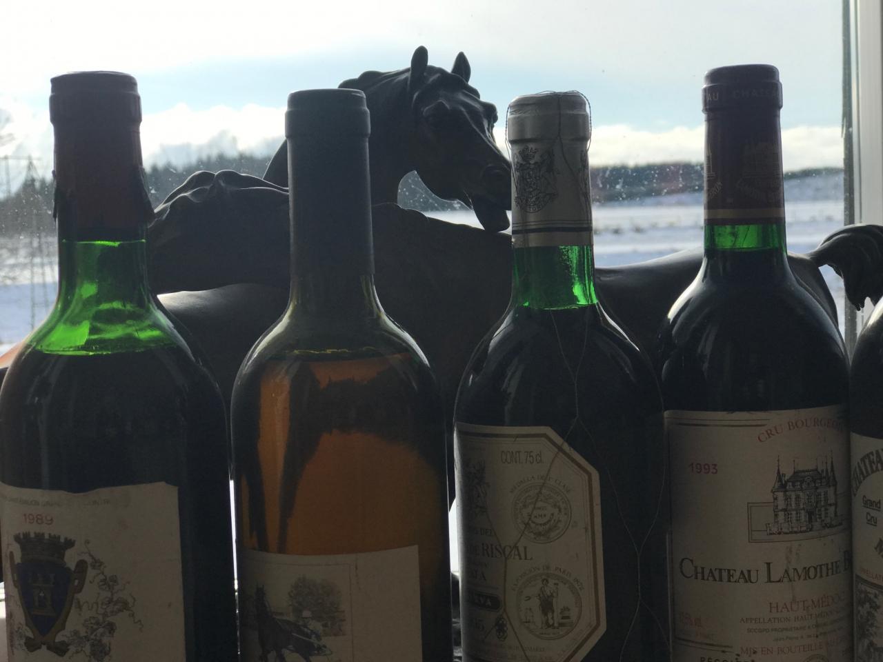I Frankrike finns det mycket saker att njuta av, inte bara hästar utan också andra godsaker...