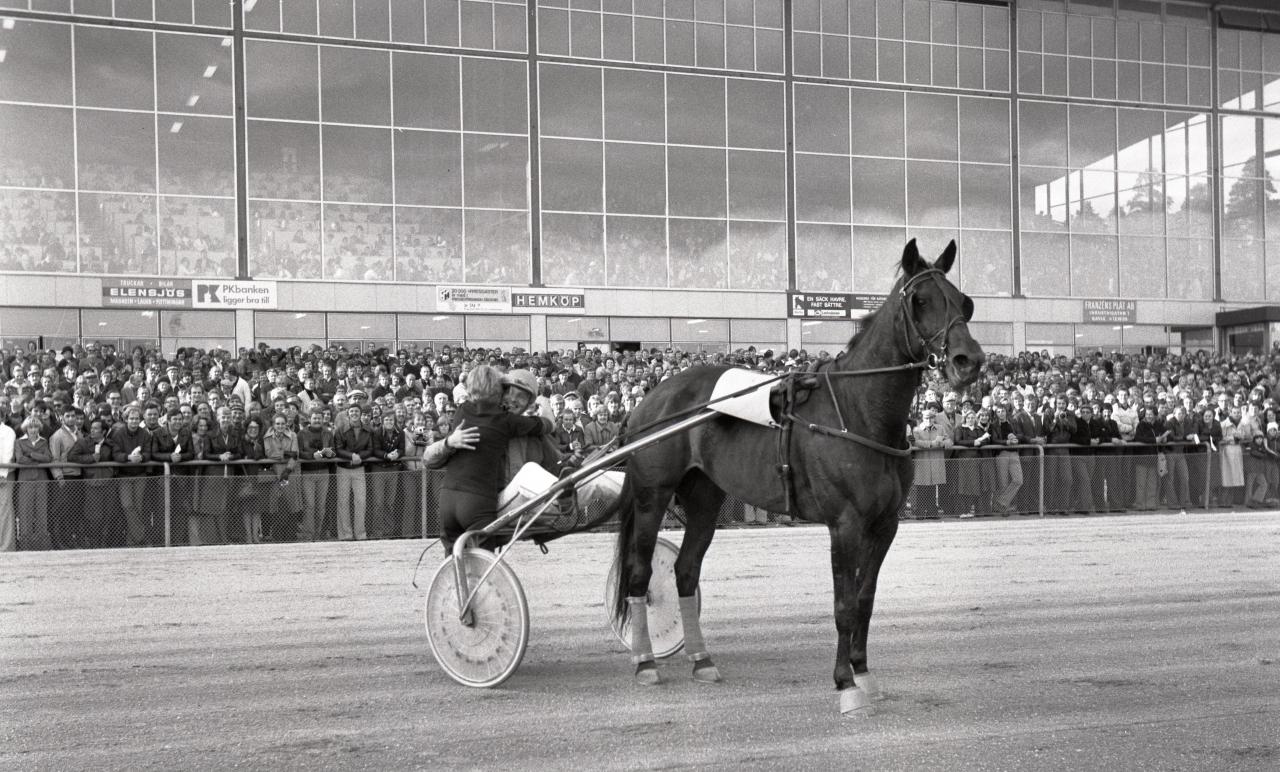 """När hästarna sattes i centrum...Grande Frances lockade storpublik vid en av sina två segrar i Gävle Stora Pris. Då hette det V65 på lördagar – nu är det V75 som gäller och det stora """"spelet"""" drar ingen storpublik längre. Foto: stalltz.se"""