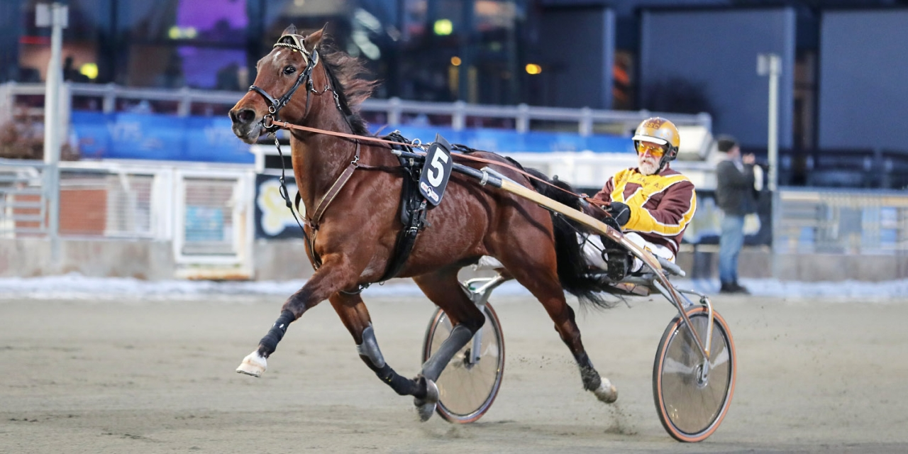 On The Dot och Sten S Carlsson testar i silverdivisionen på hemmaplan. Foto Jeannie Karlsson/Sulkysport