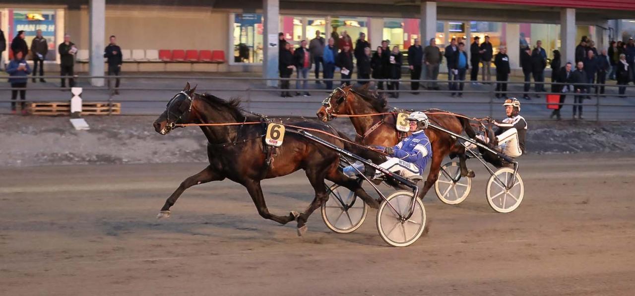 Attraversiamo och Erik Adielsson segrade i Umåkers Treåringselit. Foto Jeannie karlsson/Sulkysport