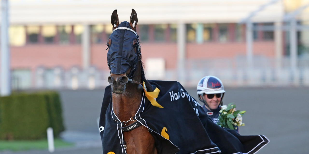 Stig h radd for elitloppet