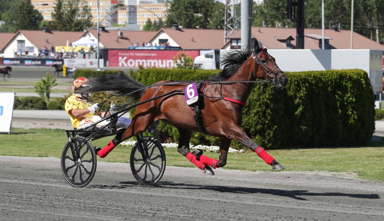 Peace of Mind vann Kommunloppet I Montegiorgio. Foto Jeannie Karlsson/Sulkysport