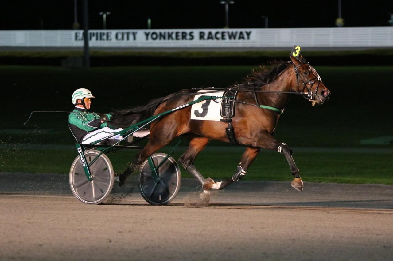 Plunge Blue Chip och Åke Svanstedt vid en tidigare seger. Foto: Lisa Photo