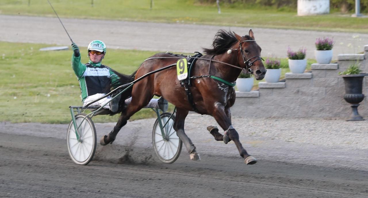 Jörgen Westholm jublar efter segern i Östersunds trekilometerslopp med Flash Hammering. Foto Mathias Hedlund