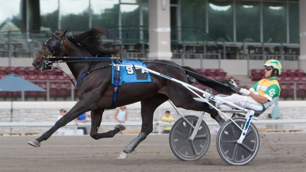 Giveitgasandgo kan ha tävlat på otillåtet medel när han vann finalen i Pennsylvania Sire Stakes. Foto: Chris Gooden