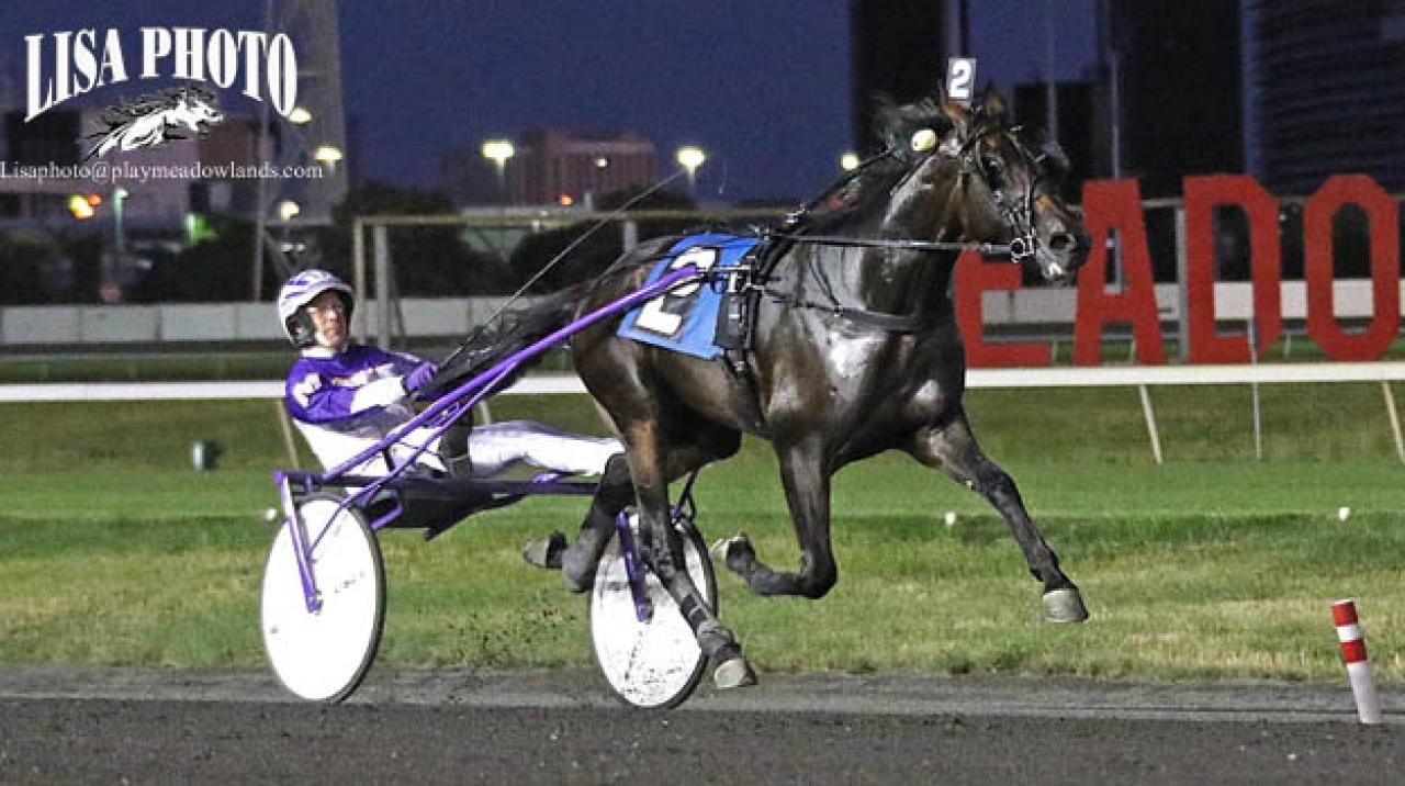 Auktionsdyringen Battenberg vann försök i New Jersey Sire Stakes för David Miller. Foto Lisa Photo