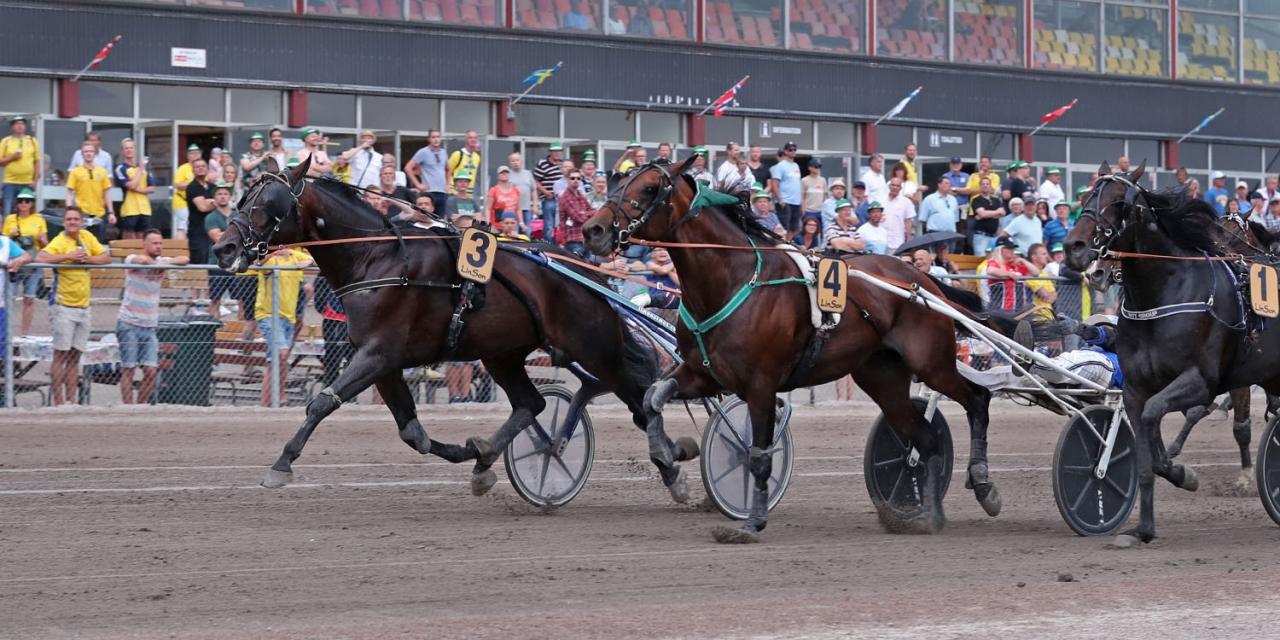 Globalsatisfaction (längst ut) var lördagens snabbaste häst. Foto Mia Törnberg/Sulkysport