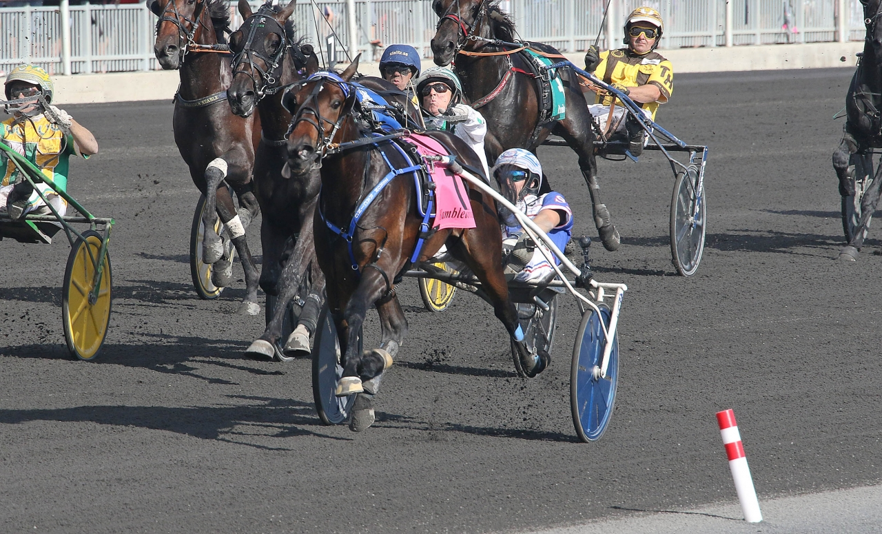 Atlanta och Scott Zeron vid finalsegern i Hambletonian Stakes ($1.000.000) på Meadowlands. Foto: Lisa Photo