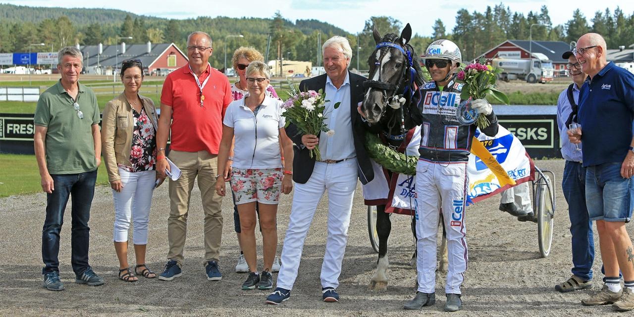 Jan-Olov Persson-tränade Eld Rask vann Svenskt Travkriterium. Nu tar kretsen sats mot den norska motsvarigheten. Foto Girlpower