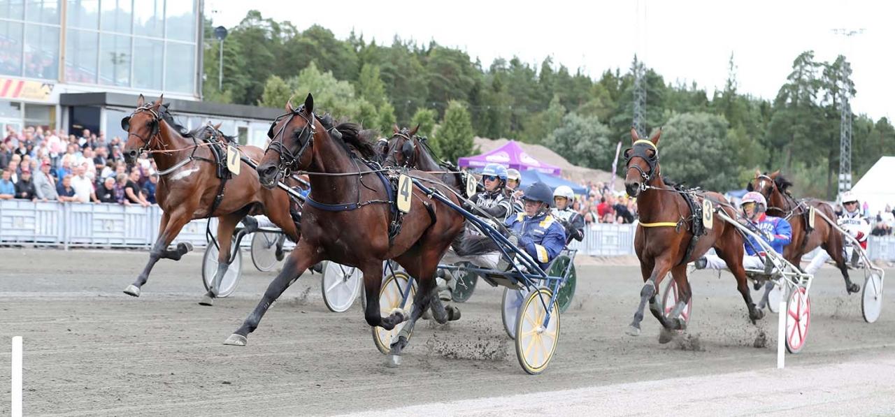 Volstead och Örjan Kihlström vann Gävle Stora Pris. Foto Jeannie Karlsson/Sulkysport