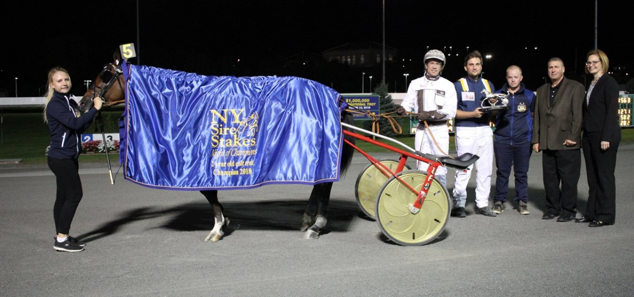 Hela gänget runt Gimpanzee efter nattens finalseger i New York Sire Stakes. Foto: Mike Lizzi