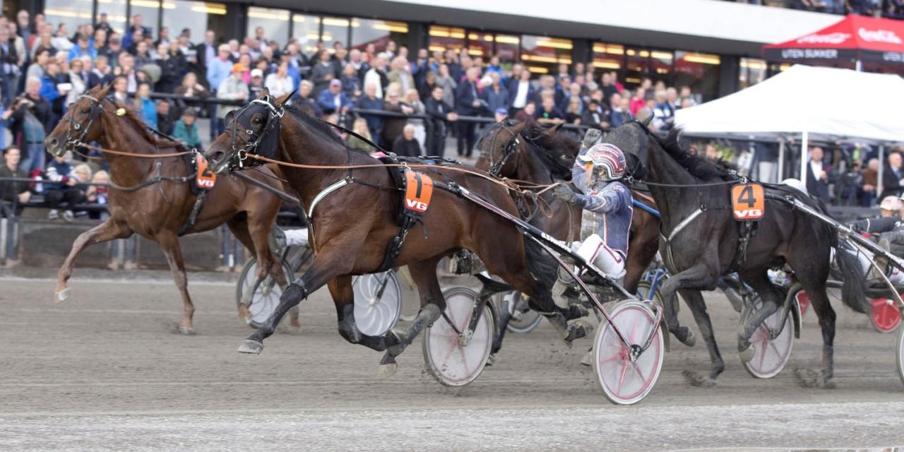 Magnus Teien Gundersen vann Norskt Travderby med Gretzky B.R. Foto: Jeannie Karlsson