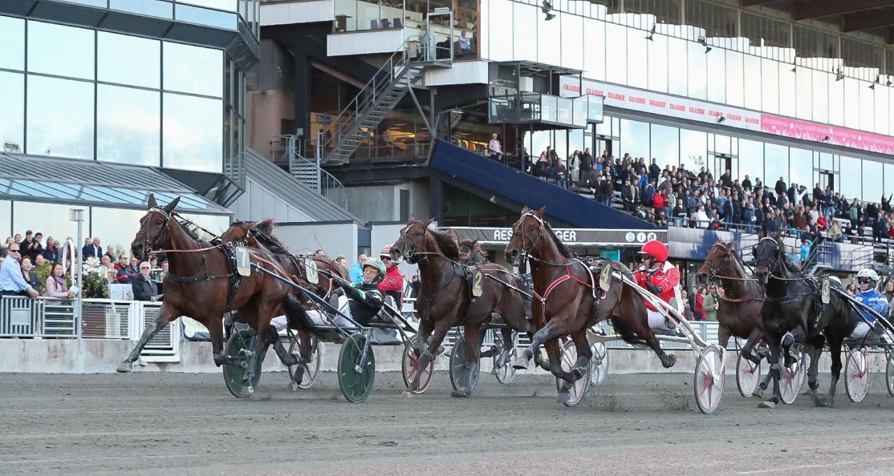 Inti Boko och Johnny Takter vinner Svensk Trav-Kriterium. Foto Jeannie Karlsson/Sulkysport