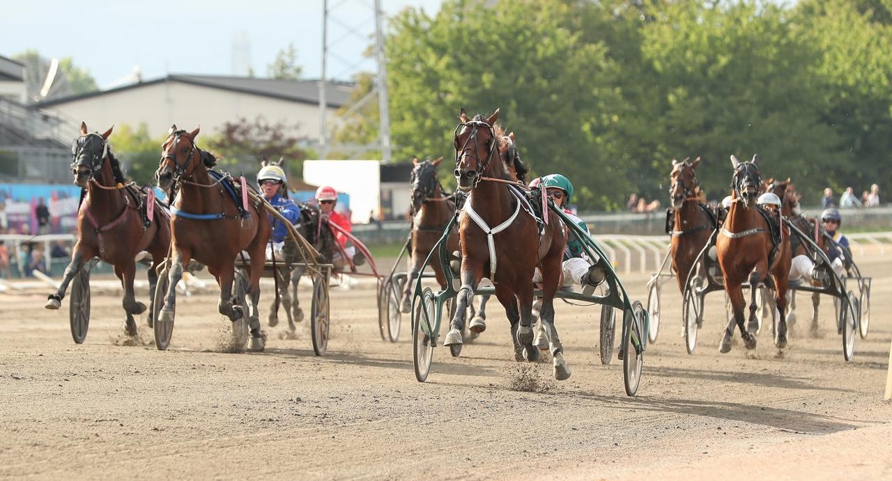 Slutstriden i Derbyt. Foto: Jeannie Karlsson/Sulkysport