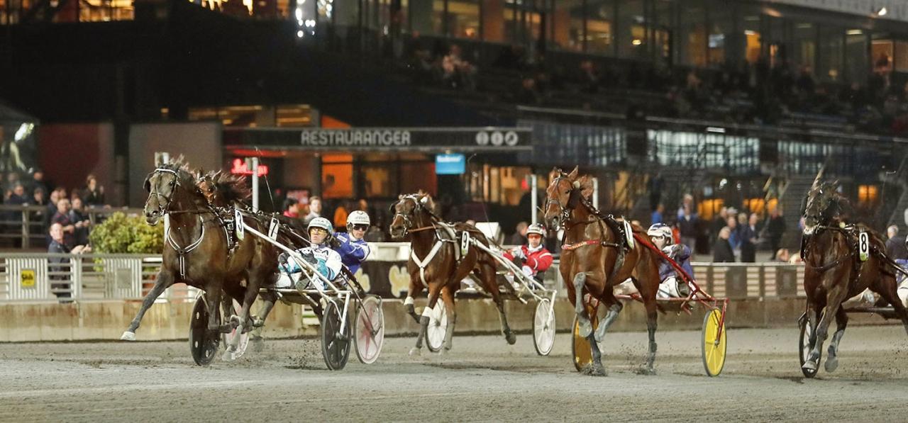 Maria Törnqvist konstaterar att 85 av 144 hästar i Kriterie- och Oakskvalen kom från de tre storbanorna Jägersro, Solvalla och Åby. Foto Jeannie Karlsson