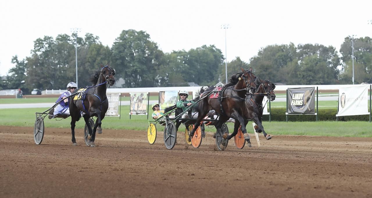 Six Pack och Åke Svanstedt vid seger i Kentucky Futurity. Nu är det Breeders Crown som gäller. Foto Jeannie Karlsson/Sulkysport
