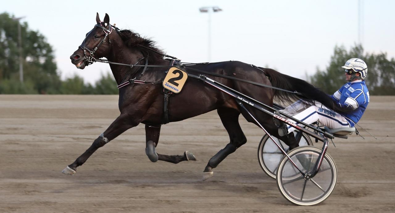 Very Kronos och Erik Adielsson. Foto Jeannie Karlsson/Sulkysport