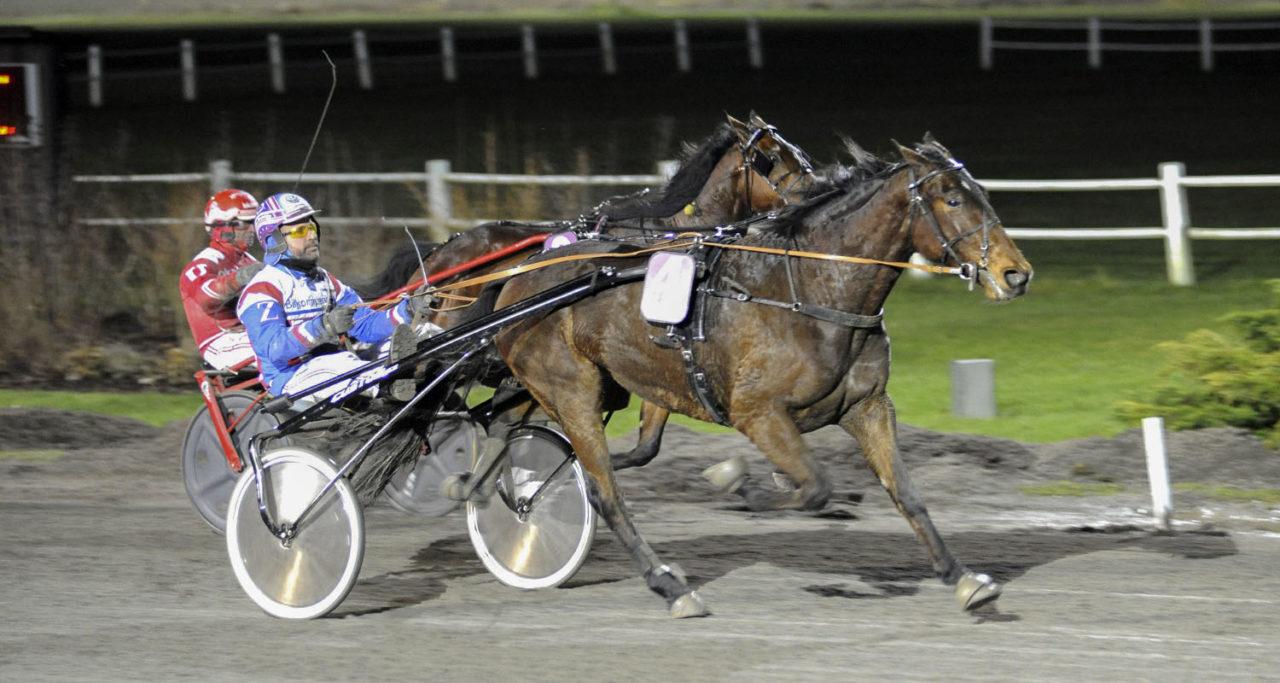 Esteban S.T. och Anders Zackrisson, Travsport, Sulkysport, Travhäst