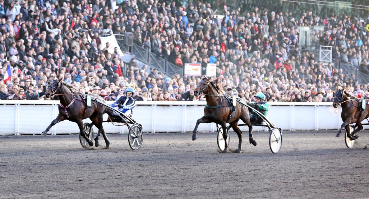 En halvbror till Cash Gamble (bilden) blev dyrast på Klasselöpsauktionen i Norge igår. Här vinner Cash Gamble Prix Jean-Rene Gougeon. Foto: Mia Törnberg/Sulkysport