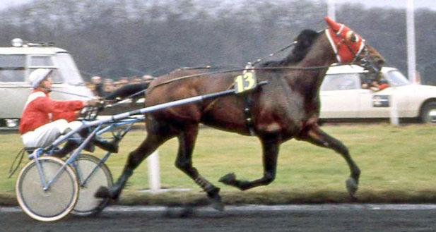 Bellino II från Prix d'Amérique 1976