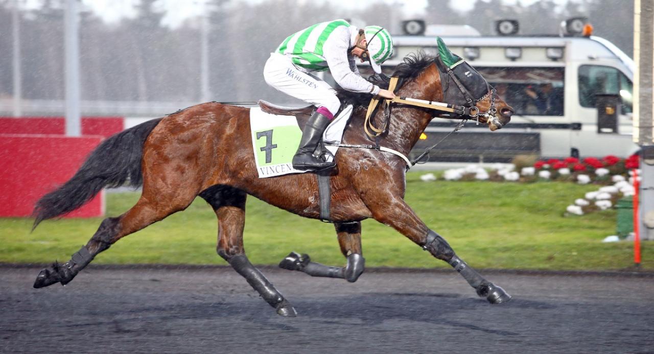 Bilibili med ständige jockeyn Alexandre Abrivard hade uppvisning i regnet på Vincennes och sänkte världsrekordet över den aktuella distansen med en tiondel. Foto Scoopdyga.com