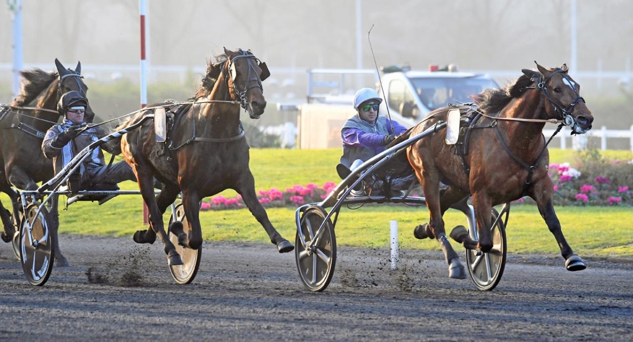 Charly du Noyer slog Vain Sund och Treasure Kronos i Prix Jean Le Gonidec (€120.000) den 9 februari. Foto Mia Törnberg