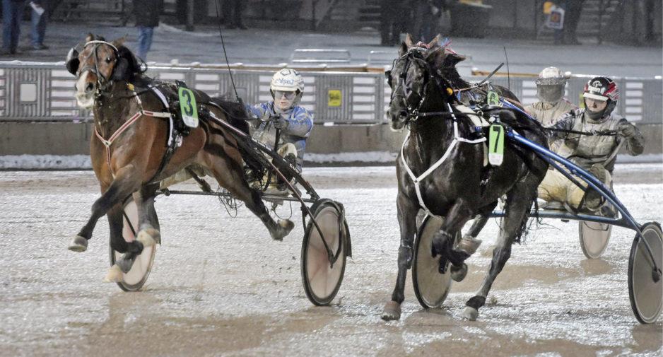 Global Un Poco har redan tjänat 430.000 kr detta år genom två segrar och en andraplats. Foto Leif Norberg/ALN