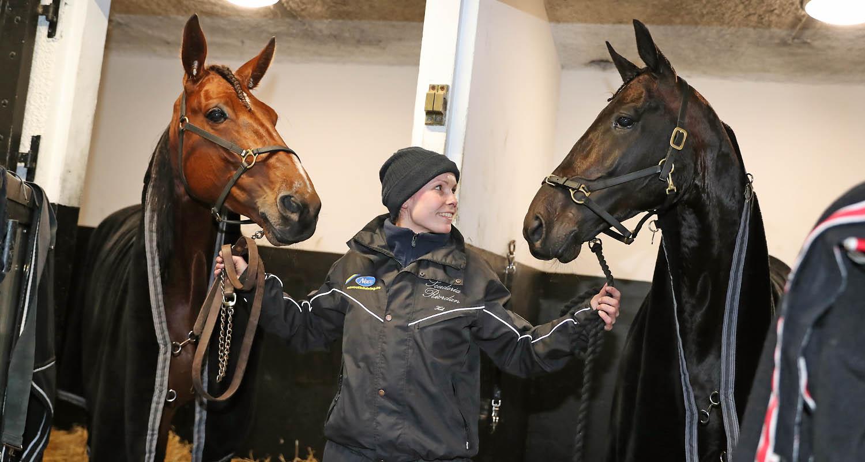 Kompisarna och boxgrannarna Twister Bi (t.v.) och Tangro Negro (t.h.) tillsammans med Heli Tarrimaa som sköter om grabbarna. Foto Mia Törnberg