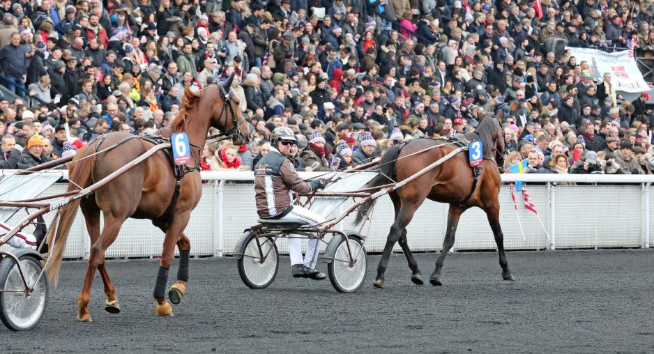 Lionel och Call Me Keeper startar i Prix de France på söndag. Foto Mia Törnberg